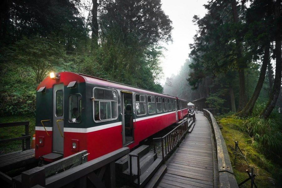台湾交通情報:台湾観光鉄道・阿里山登山鉄道